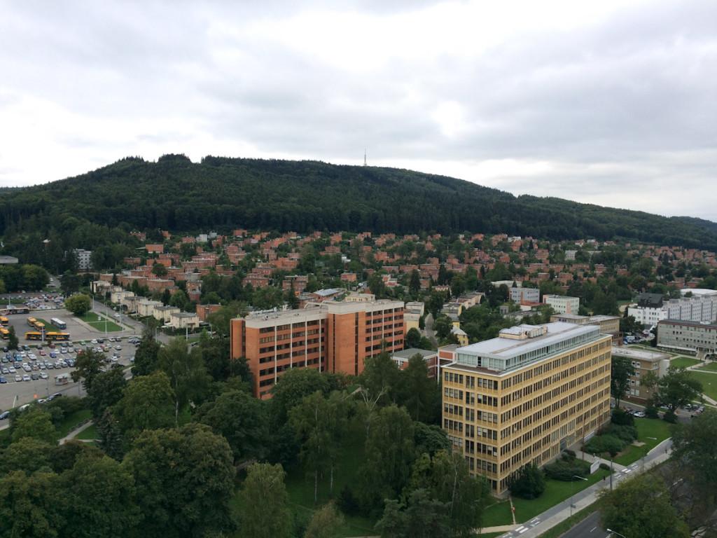 Letna district