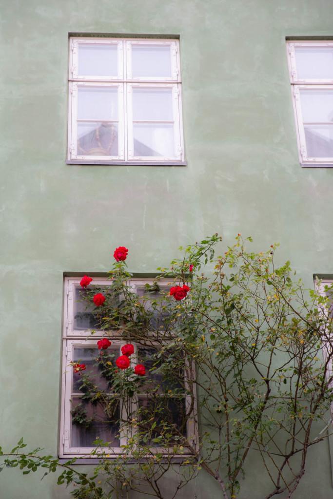 A postcard from København <3